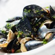 Clam dish — Stock Photo #26030557