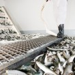 Stock Photo: Fish factory.