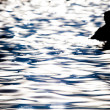 Silhouette in ripples — Stock Photo