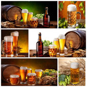 Wine collage — Stock Photo