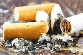 Cigarette buds and cigarette — Stock Photo