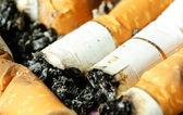 Cigarette buds — Stock Photo