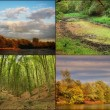 Romanian landscapes — Stockfoto