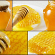 Honey collage images. — Stock Photo