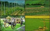 罗马尼亚农村风景. — 图库照片