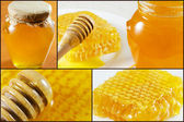 Honey collage images. — Stock Photo