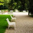 Stock Photo: Empty bench.