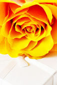 Rose on a gift box. — Stock Photo
