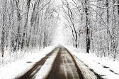 Winter landscape. — Стоковое фото