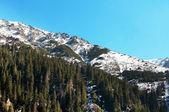 Mountains ridge. — Stock Photo