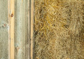 Hay bails in the barn for horse feed — Stock Photo