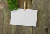 Blank memo or menue space on wood — Stock Photo