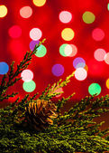 Christmas Decoration with Bokeh lights — Stock Photo