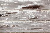 Bianco vernice scrostata — Foto Stock