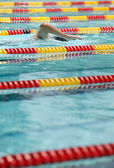 Boy Swimming in Lap Pool — Stock Photo