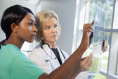 Female nurse and doctor looking at xrays — Stock Photo