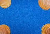 Quadro com 4 conchas na areia azul — Foto Stock
