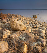 Seascape — Zdjęcie stockowe