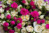 Buquê de rosas — Foto Stock