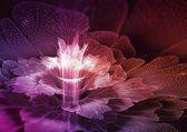 Flor abstracta fractal — Foto de Stock