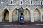 Windsor castle — Stockfoto