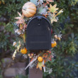 Thanksgiving decoration in the garden. — Stock Photo
