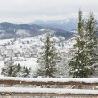 Winter in Carpathian Mountains. — Stock Photo