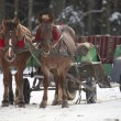 Traditional Ukrainian Christmas horse cart. — Stock Photo