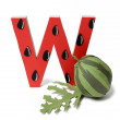 Paper watermelon and W letter — Stock Photo