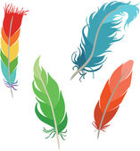Various types of feathers — Vetorial Stock