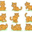 Collection of nine cute kittens on white background  — Stock Vector
