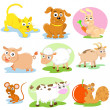 Stock Photo: Pet set