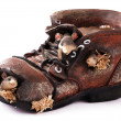 Old ragged shoe — Stock Photo