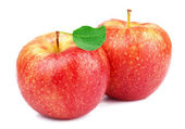Ripe juicy apple — Foto de Stock