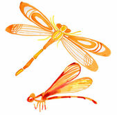 Watercolor dragonfly — Stock Photo