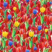 Spring seamless wallpaper with Tulips flowers — Stock Photo