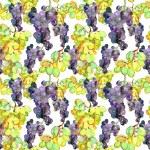 Watercolor Grape Seamless Pattern — Stock Photo