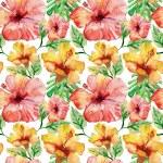 Hibiscus flowers. — Stock Photo #36596113