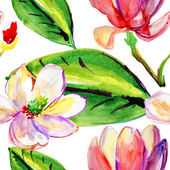Magnolia, watercolor illustration — Stock Photo