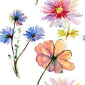 Fondo transparente con flores silvestres, ilustración acuarela — Foto de Stock