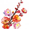 Blooming bright red flowers of the tree branch. watercolor — Stock Photo