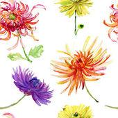 Watercolor illustration with beautiful chrysanthemum flowers — Stock Photo
