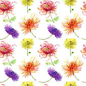 Watercolor illustration with beautiful chrysanthemum flowers, — Stock Photo