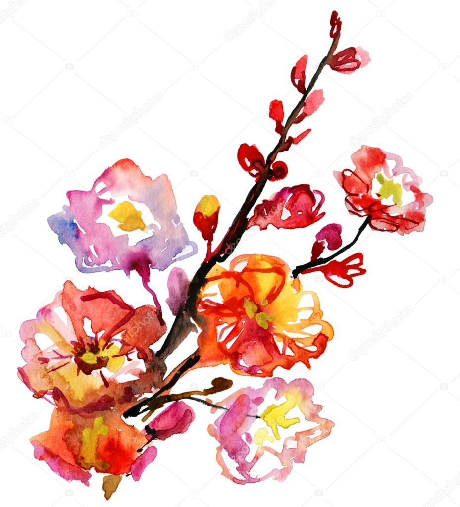 Цветущая ярко красные цветы из ветви