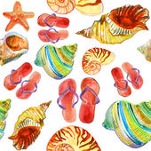 Shells, sea star and slippers — Stock Photo