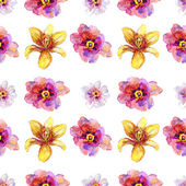 Flores peônia linda — Foto Stock