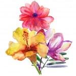 Beautiful flowers — Stock Photo #39862977