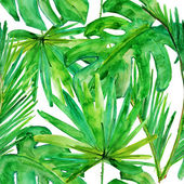 Tropical leaves. — Stock Photo