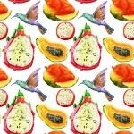 Exotic fruits and birds background. — ストック写真
