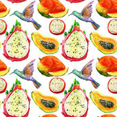 Exotic fruits and birds background. — Stock Photo